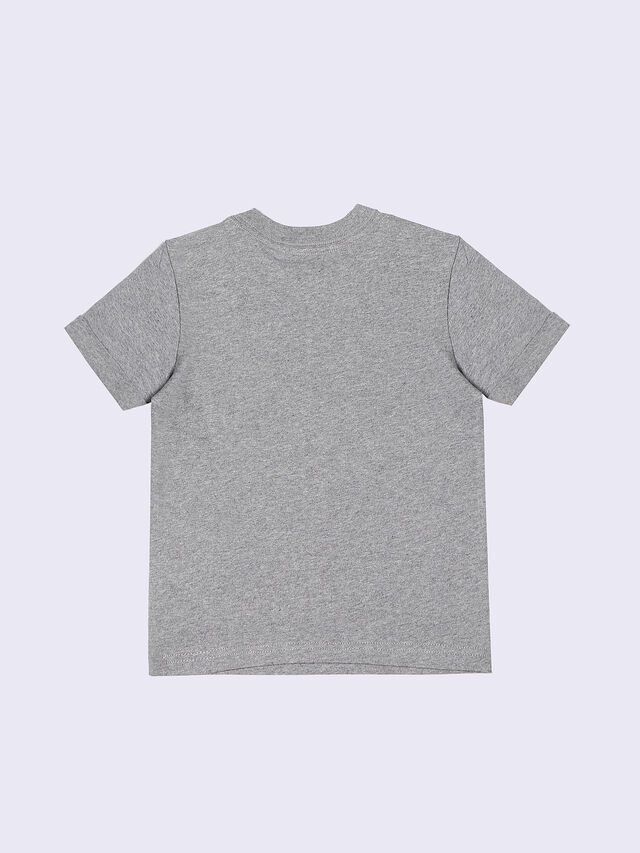 TICSOB-R, Grey