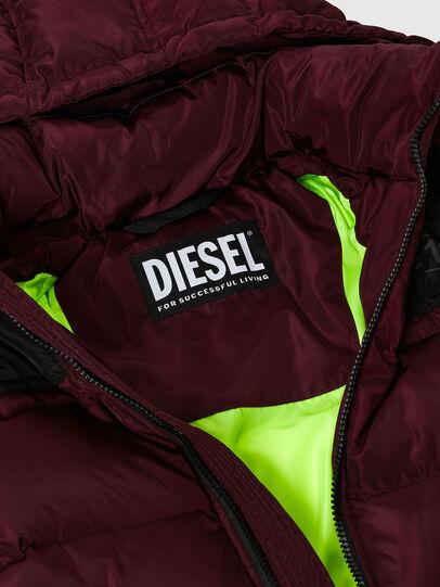 Diesel - W-RUSSELL, Violet - Winter Jackets - Image 3